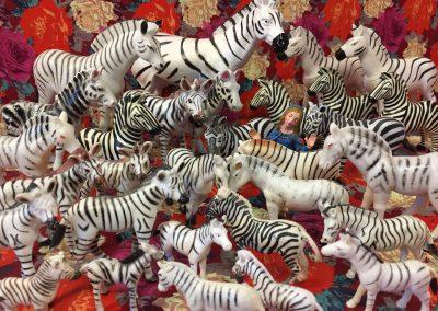 Gabrielle de Montmollin, Blessing of the Zebras, 2017