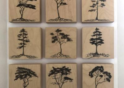 Cypress Panel, 2015